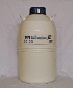 Millenium II (XC 24)